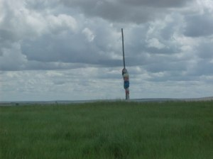 Spirit pole at Buffalo Effigy