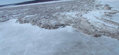 Ice-Surge---Codette