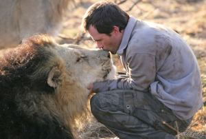 Kevin Richardson kissing a lion