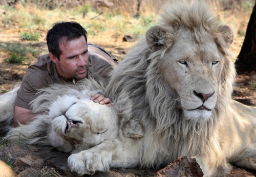 kevin richardson go 2